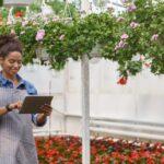 Modernkan Bidang Pertanian Melalui Website!